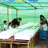 โครงการ อนุรักษ์พันธุกรรมพืชอันเนื่องมาจากพระราชดำริ สมเด็จพระเทพรัตนราชสุดาฯ สยามบรมราชกุมารี : อพ.สธ.(การปลูกผักปลอดสารพิษในสถานศึกษา) ประจำปีการศึกษา ๒๕๖๓
